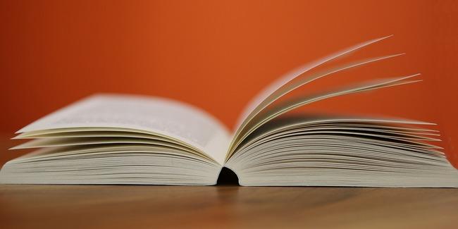 Illustratives Foto eines Buchs