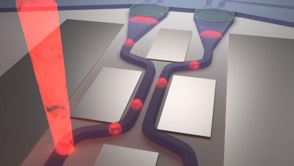 Photonischer Schaltkreis, in dem Einzelphotonen geführt und auf zwei Wellenleiterarme aufgeteilt werden. Die Detektion erfolgt direkt auf dem Chip mittels integrierter Detektoren am Ende der beiden Arme. Die reflektierenden Metallschichten dienen der Unterdrückung des Streulichts des Anregungslasers. Bild: Uni Stuttgart/M. Schwartz