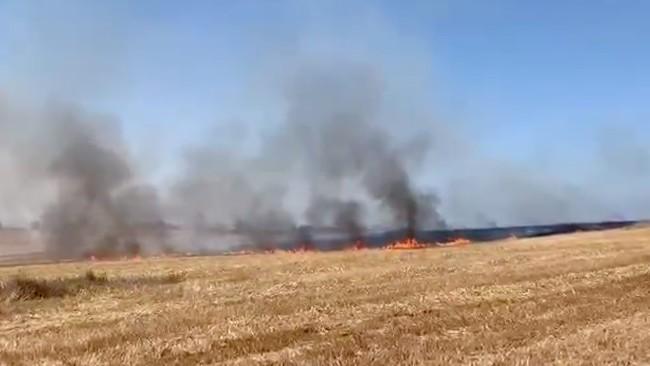 Brennendes Feld in Südisrael