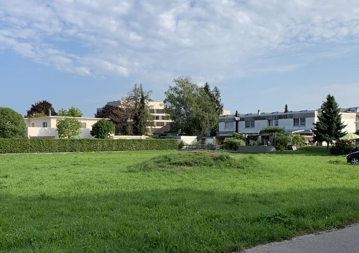 Merlachfeld Murten